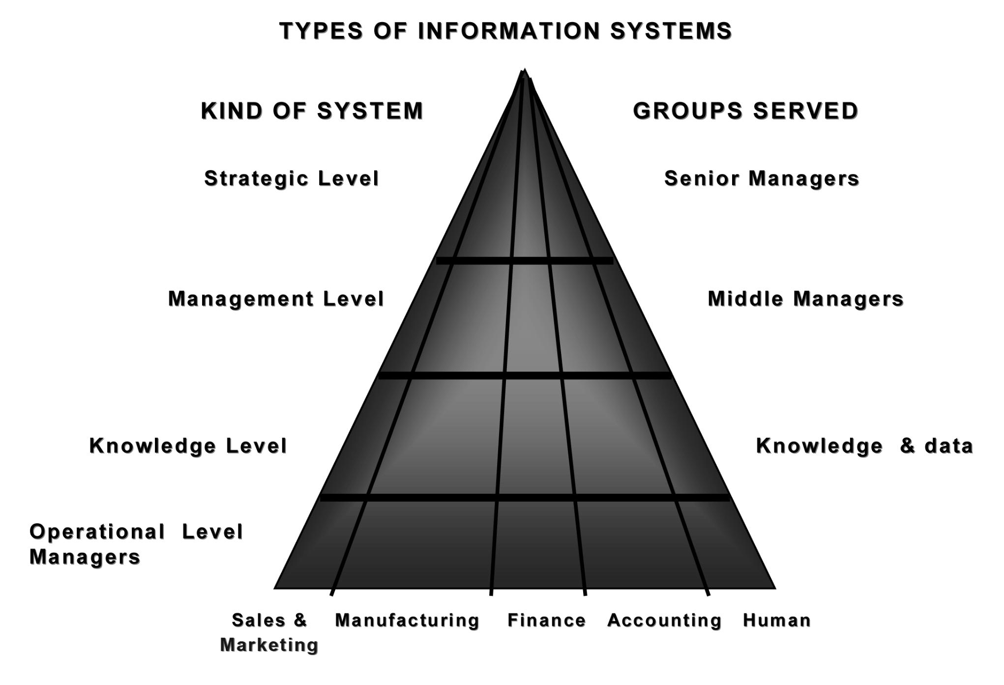 Diagram Showing the Information System in Fuhu Company Limited