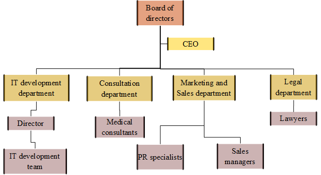 Organizational structure of the IT company