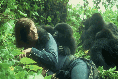 Ruth Keesling - the President and Founder of Mountain Gorilla Conservative Fund